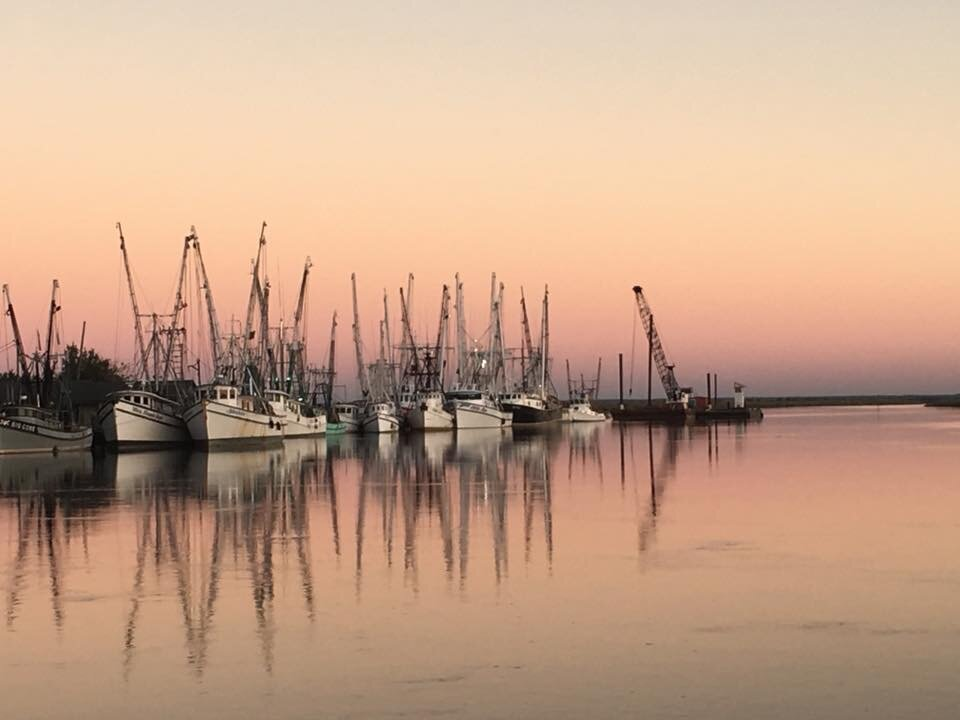 Marina with docked boats and sunset